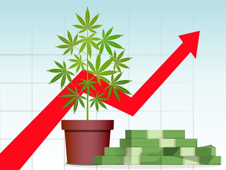 Charting Pot's Future: BDS Analytics Provides Data-Driven Look at the Cannabiz