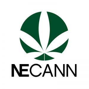 NECANN's 1st Annual Springfield Cannabis Convention