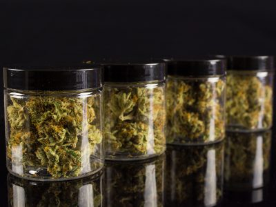 A Closer Look At Cannabis Shelf Life
