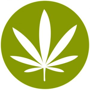 Cannabis Culture Lounge - Hastings Street