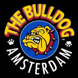 The Bulldog Rock Shop