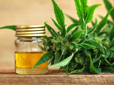 A Guide to CBD Oil: Usage, Storage & Effects