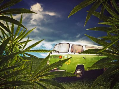 9 Best Cannabis Tours For Your Next Vacation!