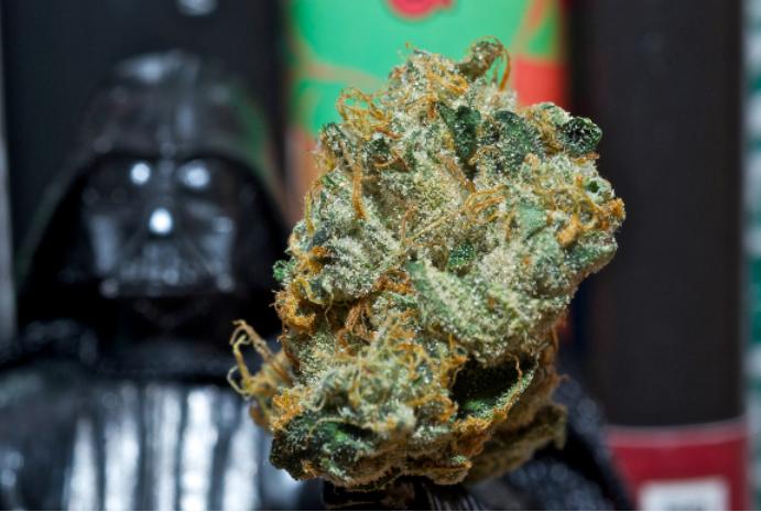7 Star Wars Strains | Herban Planet