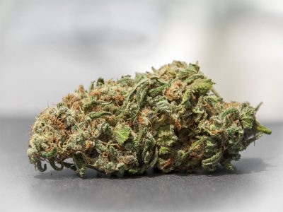 What are Some Different Strains of Weed?