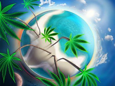 The Story Behind Marijuana's Existence