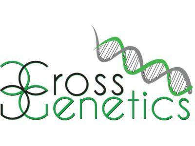 Cross Genetics - Evans