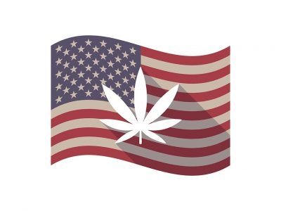 Which States are Next for the Legalization of Marijuana?