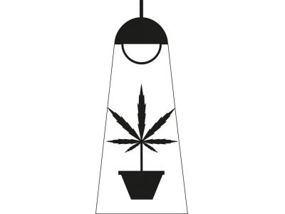 The Best Lights to Use to Grow Weed