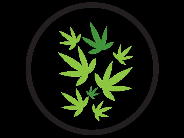 Marijuana Producers