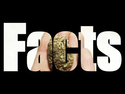 10 Facts About Marijuana