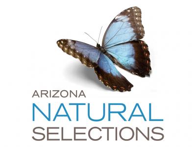 AZ Natural Selections - Peoria