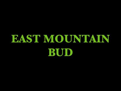 East Mountain Bud