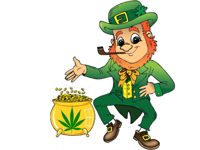 Marijuana on St Patrick's Day