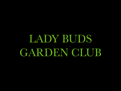 Lady Buds Garden Club