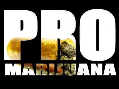 Cannabis Advocates in US Politics