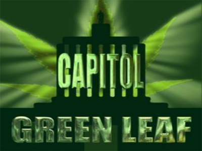 Capitol Green Leaf