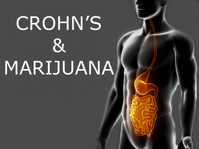 How helpful is marijuana for those with Crohn's disease?