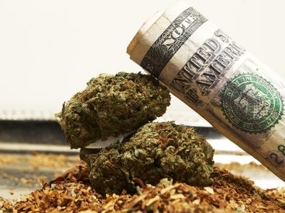 8 Reasons Why Marijuana Should be Legal