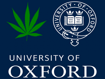 The University of Oxford and Cannabis