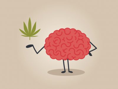 Marijuana May Heal Brain Injuries