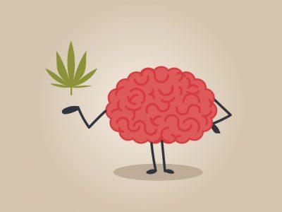 Marijuana May Heal Brain Injuries