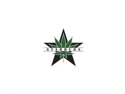 Starbuds - Aurora