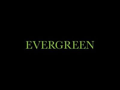 Evergreen