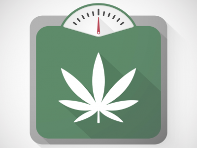 How Can Marijuana Help Obesity