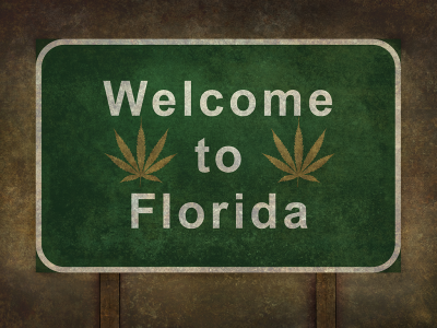 What are the Marijuana Laws in Florida?