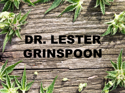 Who is Dr. Lester Grinspoon