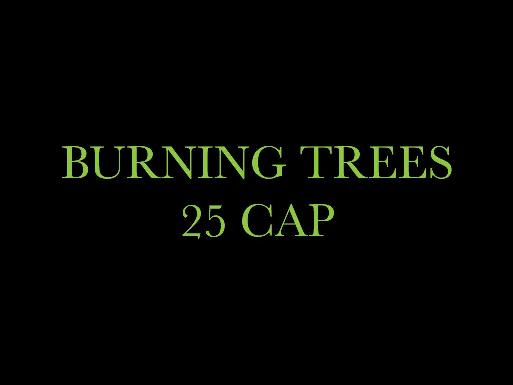 Burning Trees 25 CAP | Dispensaries | Inglewood, California