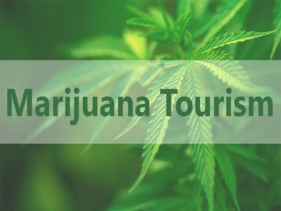 Cannabis Lodging in Washington State