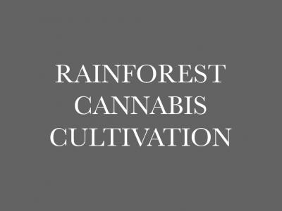 Rainforest Cannabis Cultivation