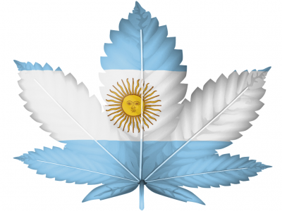 The Cannabis Scene in Argentina