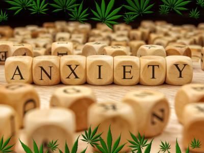 No Stoner Paranoia Here: CBD for Anxiety