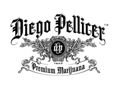 Diego Pellicer