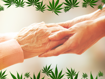 Becoming a Cannabis Caregiver
