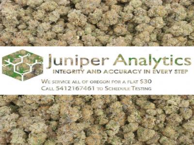 Juniper Analytics