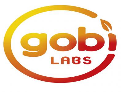 Gobi Labs