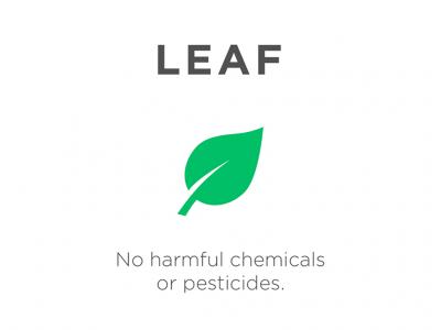 Get Leaf