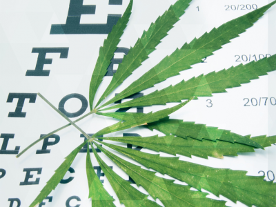 Cannabis For Glaucoma With The First Lady Of Medical Marijuana
