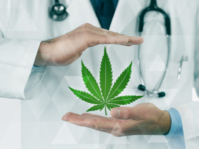 Doctor's Insights On Recommending Cannabis for Your Patients