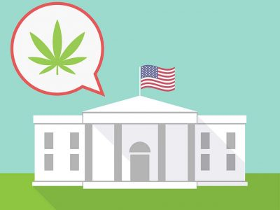 10 Things To Do While Stoned In Washington DC