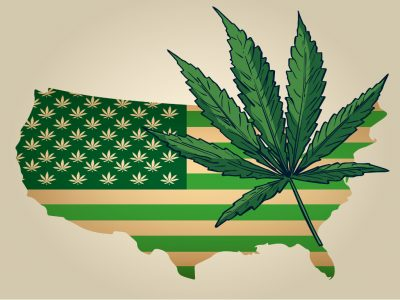 The Hype Behind Cannabis