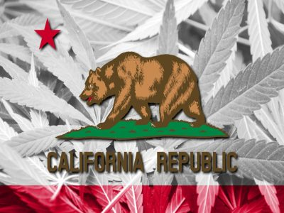 California Cannabis Industry Can Now Acquire Liability Insurance
