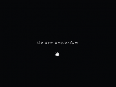 The New Amsterdam - Lakeview
