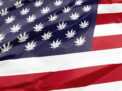 Legalize It: States That'll Be Voting on Marijuana Legalization