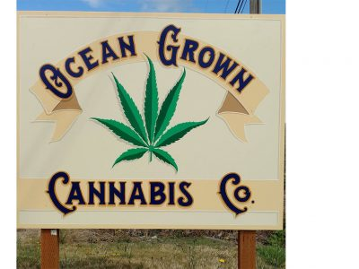 Ocean Grown Cannabis Company