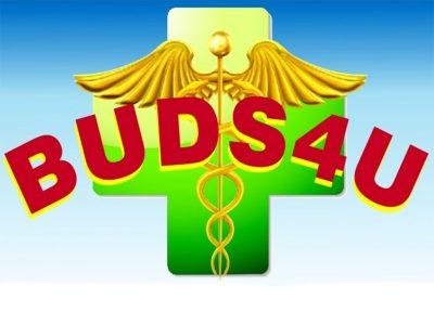 Buds4u - Florence